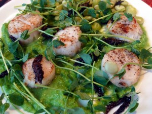 Gordon Ramsay Scallops Recipe Hell S Kitchen