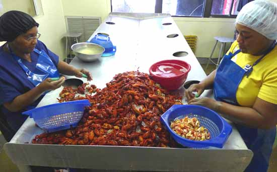 Crawfish peeling