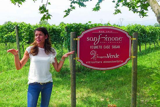 San Simone welcome2