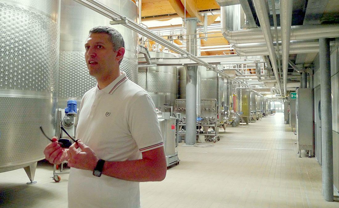 enologist Mateo Covazzi at Mezzacorona