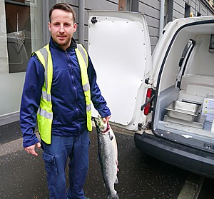 fish supplier in Belfast