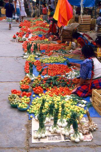 selling tomatoes and fruits at Oaxaca market