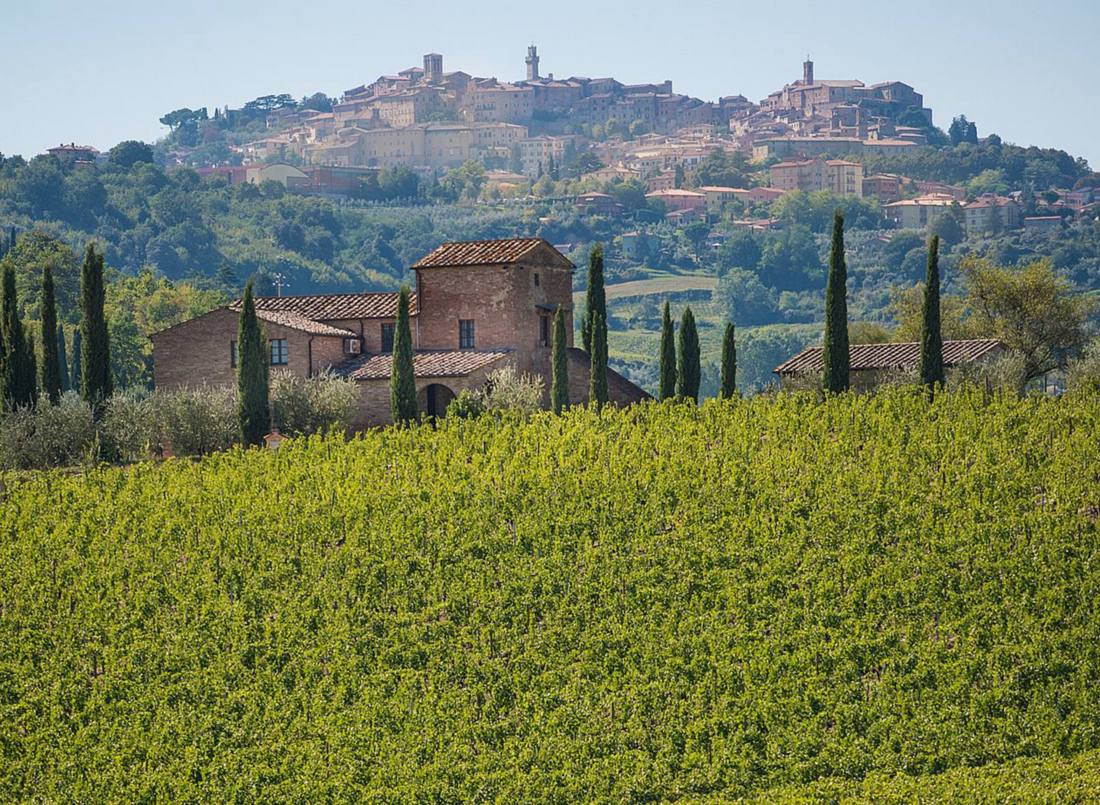 Vineyards surround hill town of Montepulciano in Tuscany