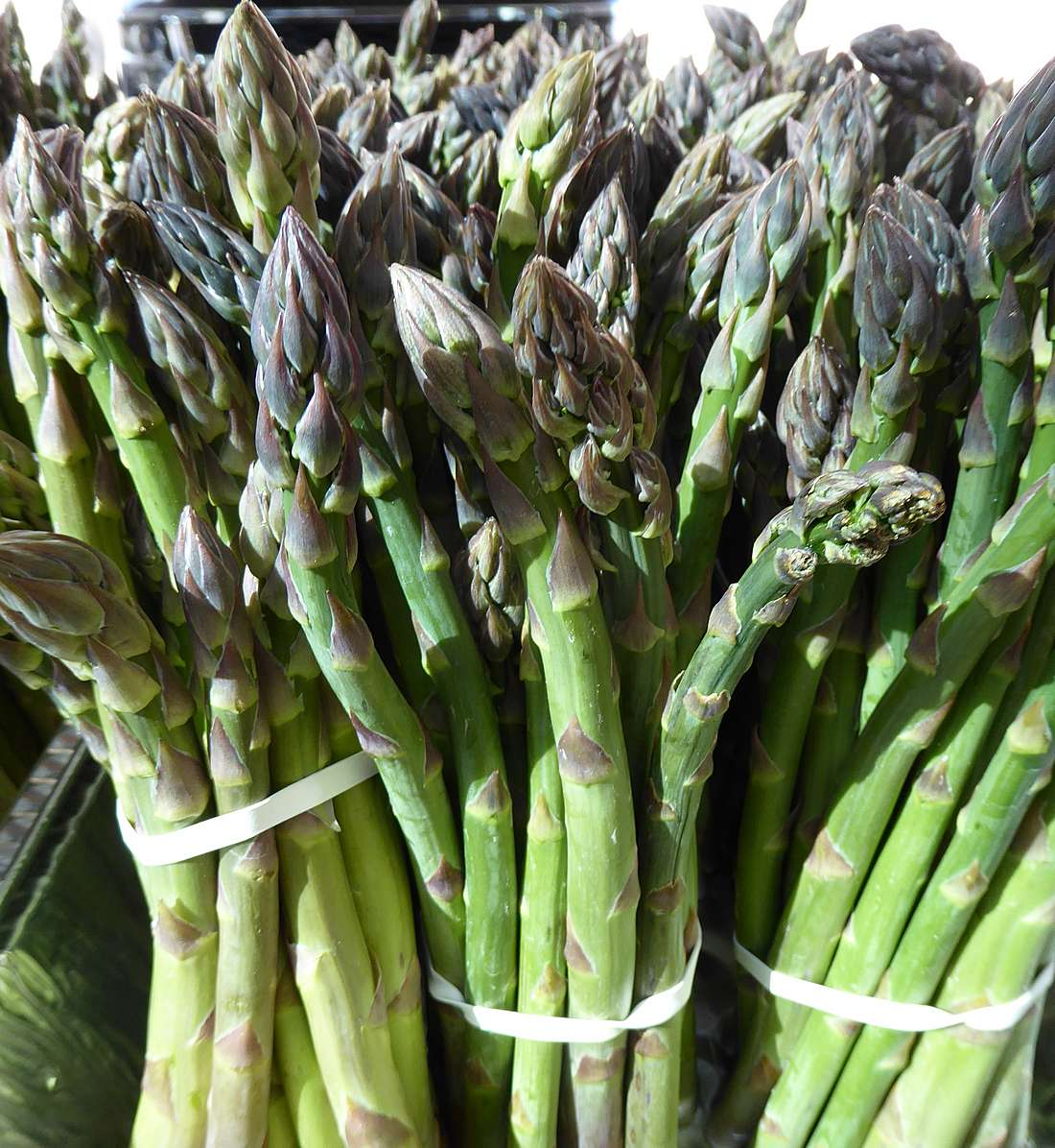 asparagus at market