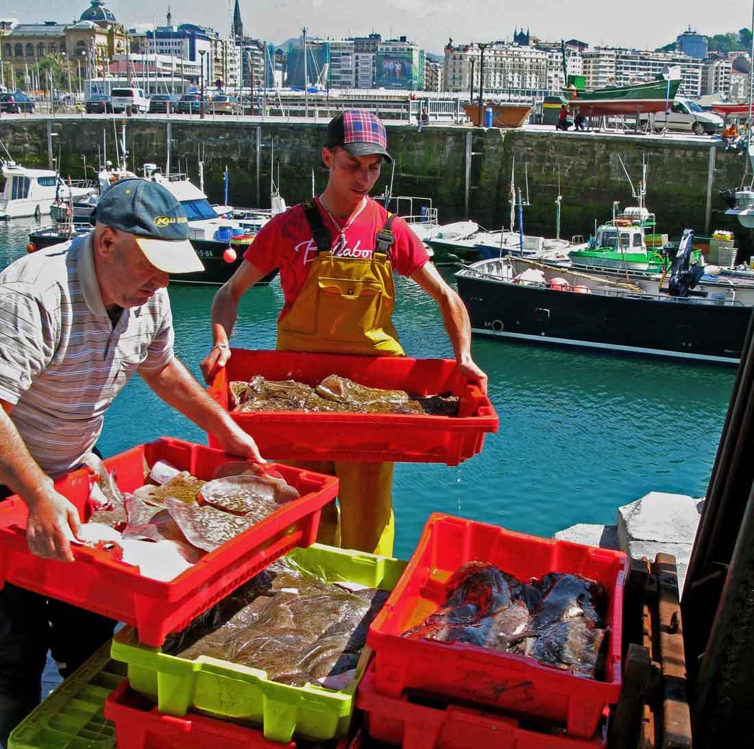 unloading fish in San Sebastian
