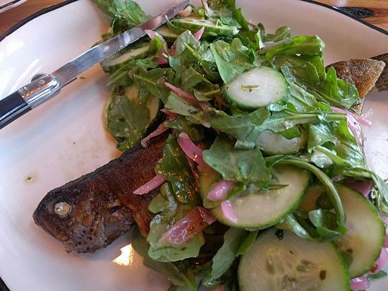 Trout at Portage House