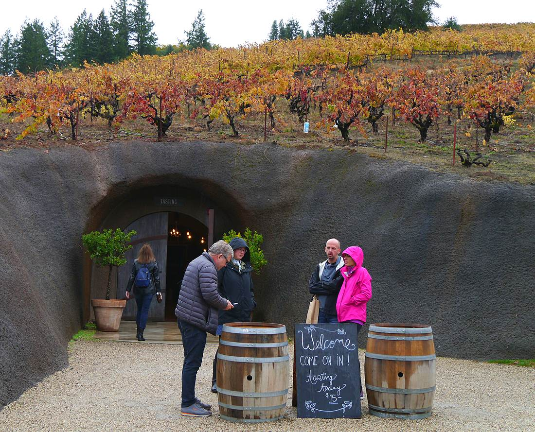 Bella's caves sit under Lily Hill vineyard