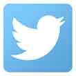 twitter button 110px