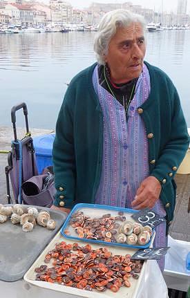 mollusk seller at Quai des Belges fish market in Marseille