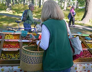 Farmers market Portland, Maine
