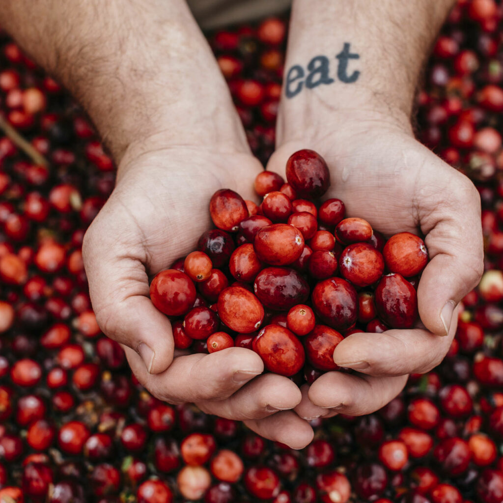 Chefs and growers jointly hail the versatile cranberry