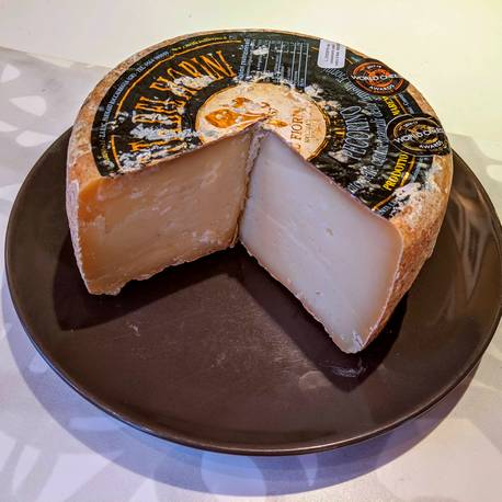 Il Fiorino crafts wine-friendly pecorino cheeses